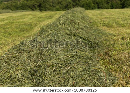 summer hay making field landscape in rural countryside of south germany #1008788125