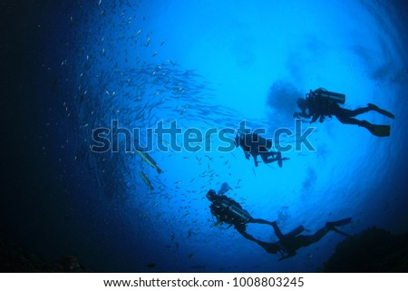 Scuba dive underwater coral reef Royalty-Free Stock Photo #1008803245