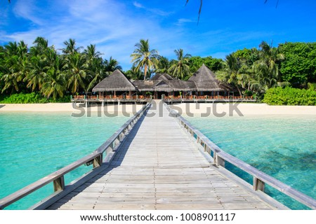 beautiful tropical island at Maldives - travel background #1008901117