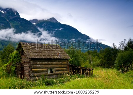 Old, abandoned cabin in an overgrown meadow #1009235299