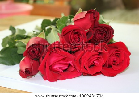 Red Roses Valentine's Day #1009431796