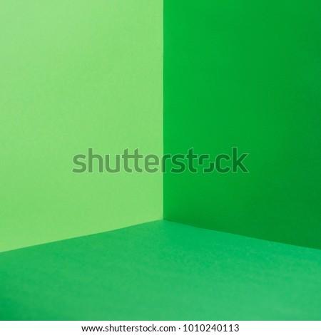 empty corner with green walls and floor #1010240113