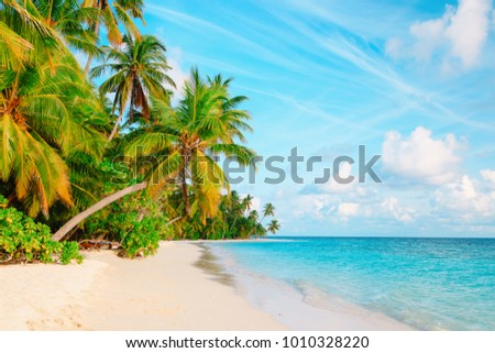 tropical sand beach with palm trees #1010328220