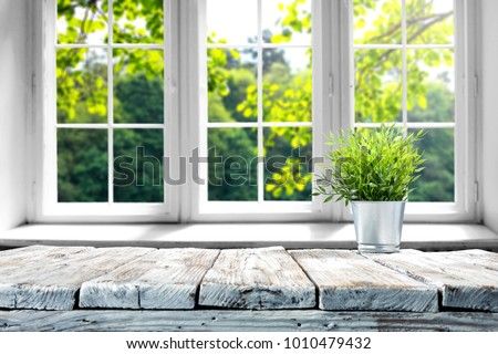 Desk of free space with green plant and window of spring time  Royalty-Free Stock Photo #1010479432
