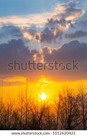 Big sun and Mist in sunrise,Morning,White balace orange on sunrise. #1012620421