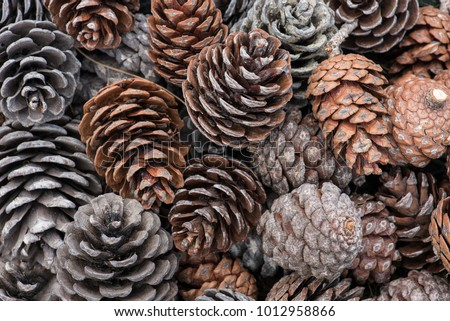 natural holiday background with pinecones grouped together Royalty-Free Stock Photo #1012958866
