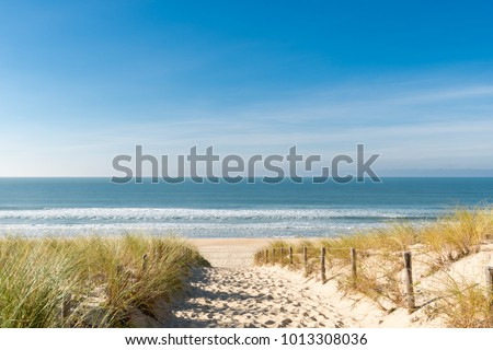 Cap Ferret (Arcachon Bay, France), access to the 'beach of the dunes' Royalty-Free Stock Photo #1013308036