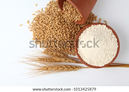 Wheat flour Bunch of wheat ears, dried grains in terracota bowl, flour in terracota  bowl    on white background. Cereals harvesting, bakery products  #1013425879