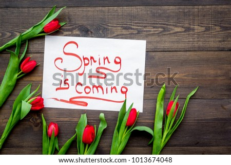 First spring flowers. Red tulips near Spring is coming lettering on dark wooden background top view copy space #1013674048