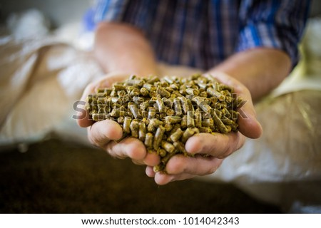 Close up image of hands holding animal feed at a stock yard #1014042343
