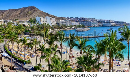 Anfi beach with palm trees - Island of Gran Canaria, Spain #1014137668