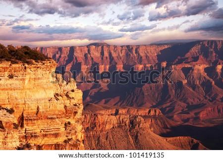 Grand Canyon #101419135