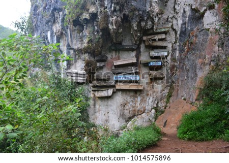 The hanging coffins of Sagada, an important touristic destination in Philippines #1014575896