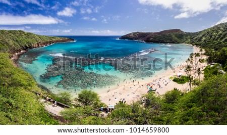 Snorkelling at the coral reef of Hanauma Bay, a former volcanic crater, now a national reserve #1014659800
