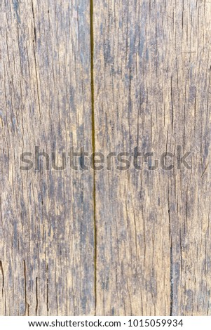 Old vertical wood background #1015059934