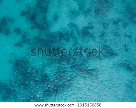 Background image of the turquoise sea. Deep sea and corals. Top view of beautiful Caribbean Sea. Aerial drone shot of turquoise water - space for text. Aquamarine background