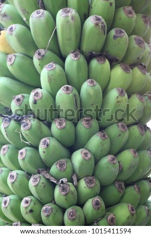 Thai fruits,vegetables ,and plants are for sale in the market.It is common scene in Thailand which we can find anywhere in the country. #1015411594