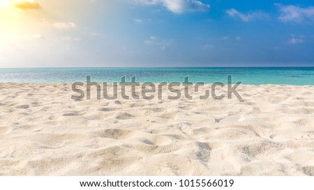 White sandy tropical beach and soft sunlight background and banner #1015566019