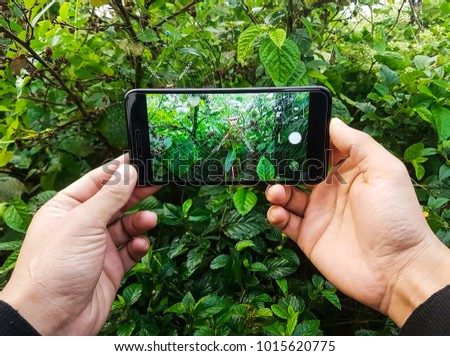 Spider In Mobile phone That's Look Super  #1015620775