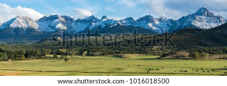 Cattle ranch below the Dallas divide mountains in Southwest Colorado #1016018500