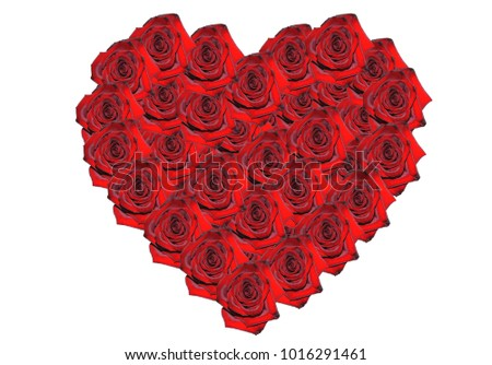 Red roses in the shape of heart on the white background isolated. #1016291461