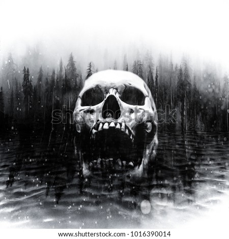 Skull in center of a dark foggy lake