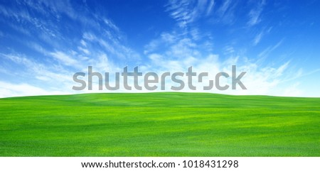 green field and blue sky with clouds #1018431298