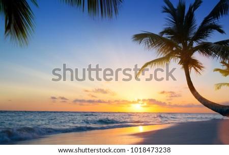 Art Beautiful sunset over the tropical beach #1018473238