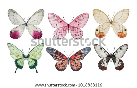 Collection of watercolor butterflies. Isolated illustrations.