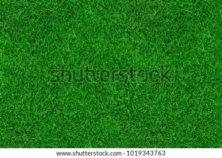 Green grass soccer texture background.