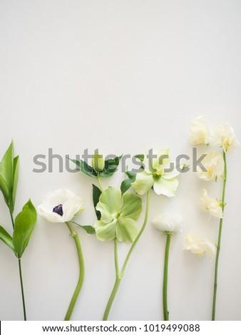 The Flower Photography