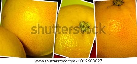 juicy delicious grapefruit #1019608027