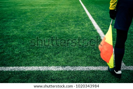 Arbitrator soccer. Referee is on the field with flag in the hand. #1020343984