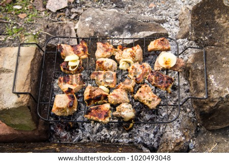 Pork meat roasting on the grill. Meat on the coals, barbeque close up #1020493048