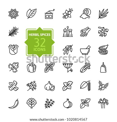 Spices, condiments and herbs  - minimal thin line web icon set. Outline icons collection. Simple vector illustration. #1020814567