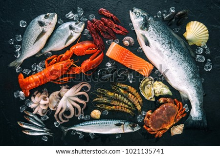 Fresh fish and seafood arrangement on black stone background #1021135741