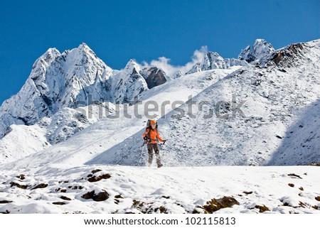 Hiking in Himalaya mountains #102115813
