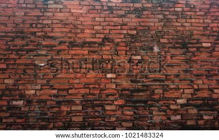 Wall paper form Brick Ayutthaya #1021483324