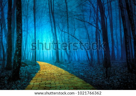 The yellow brick road leading through a spooky foggy forest #1021766362