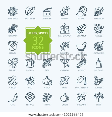 Spices, condiments and herbs  - minimal thin line web icon set. Outline icons collection. Simple vector illustration. Royalty-Free Stock Photo #1021966423
