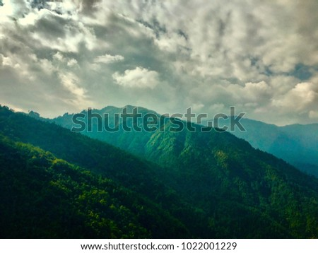 Mountains with full if greenery is covered with the white clouds in the tea valley estate. This landscape was shot on 14 Jan 2018 in Darjeeling, India. #1022001229