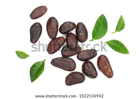 cocoa bean with leaf isolated on white background top view. Flat lay Royalty-Free Stock Photo #1022536942