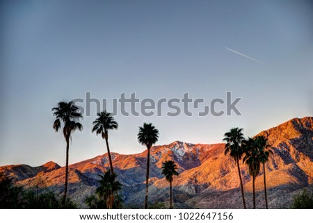 Palm Springs Mountains at Sunrise #1022647156