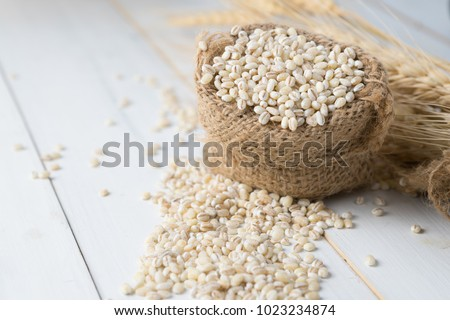 Barley grain in wooden background Barley grain is raw material #1023234874