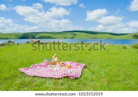 Great concept of pic-nic, pic-nic with fruits and juice on green lawn with beautiful view