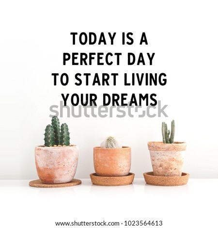 "Inspirational quote ""Today is a perfect day to start living your dreams"". Cactus in clay pots over white background #1023564613"