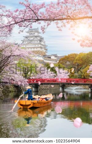 Himeji Castle with beautiful cherry blossom in spring season at Hyogo near Osaka, Japan. Himeji Castle is famous cherry blossom viewpoint in Osaka, Japan. #1023564904