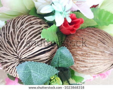 Flowers and fruits are pretty dry in baskets #1023868318