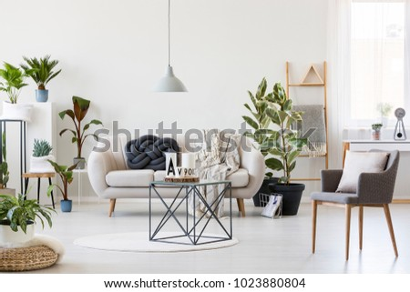 Handmade, dark knot cushion placed on a bright sofa in modern living room interior with plants #1023880804