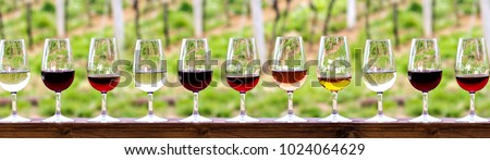 Glasses with wine. Red, pink, white wine in glasses. set of glasses with red, white and rose wine Tasting wine in the vineyard. #1024064629